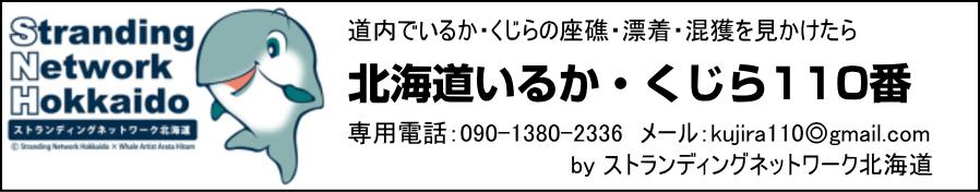 snh_banner